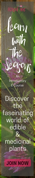 Learn with the seasons pink 120x600 (1)