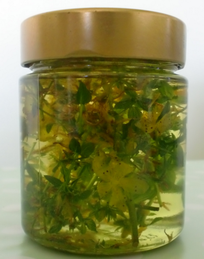 St Johns Wort infused with oil