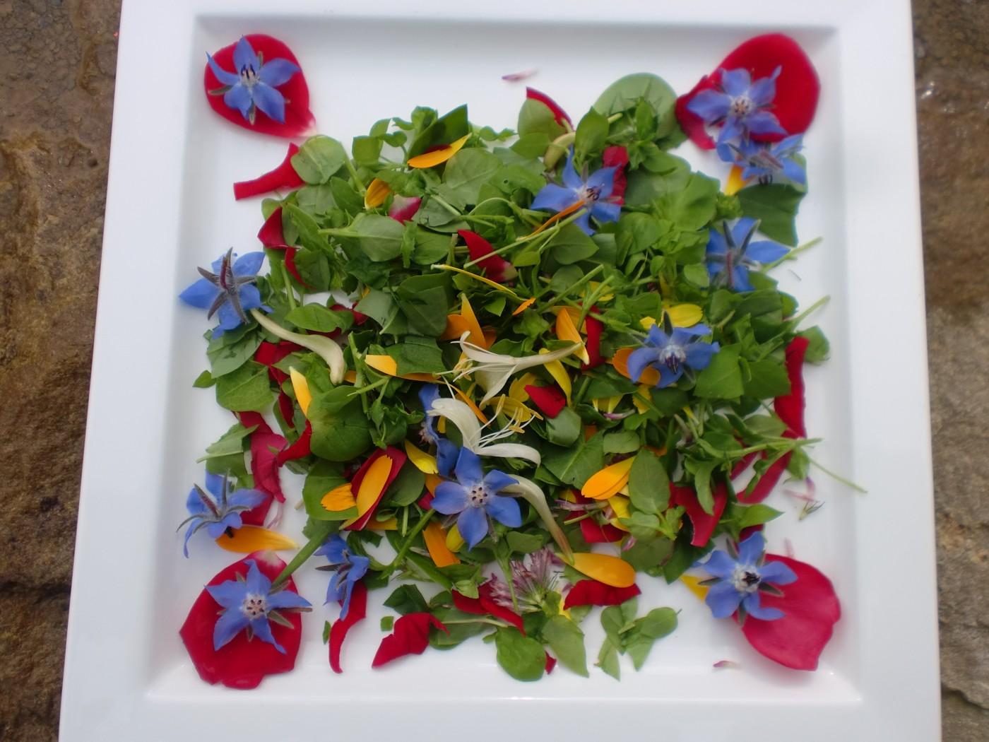 Stunning Salads